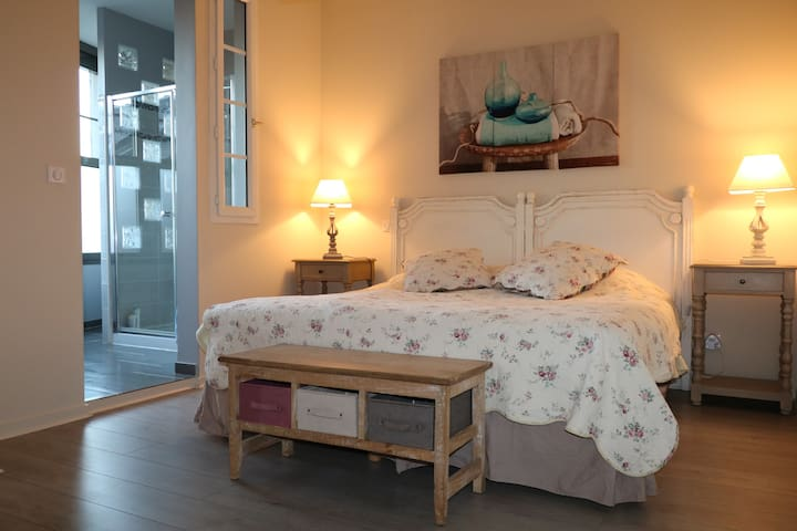 Charming Duplex of 1000 p2 in historic center