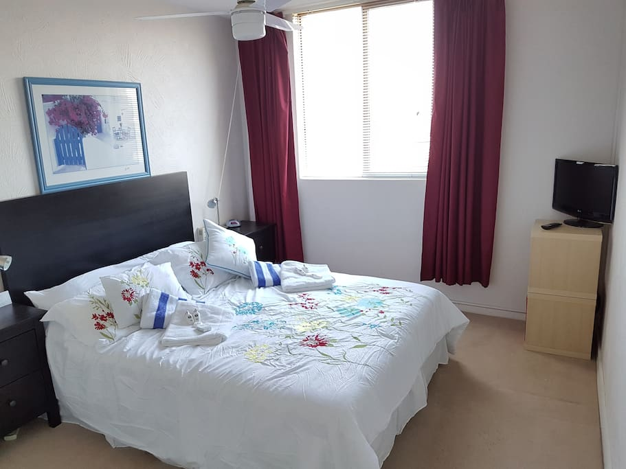Spacious First Bedroom and walk in robe..