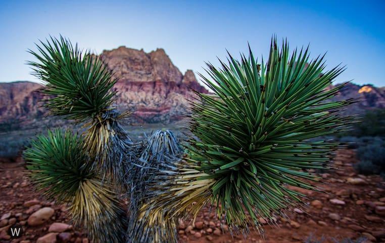 Tranquil retreat in Sin City! - Las Vegas - Ev