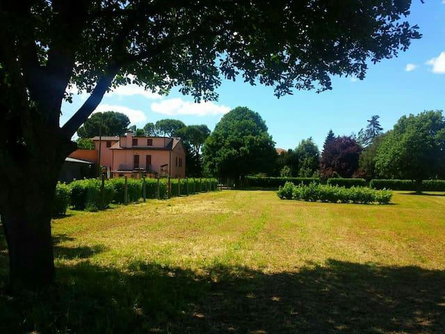 2 Mirabilandia. Riviera Romagnola - Villafranca - Apartemen