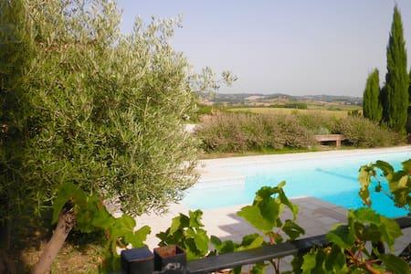 House Carcassonne area with Pool - Bellegarde-du-Razès