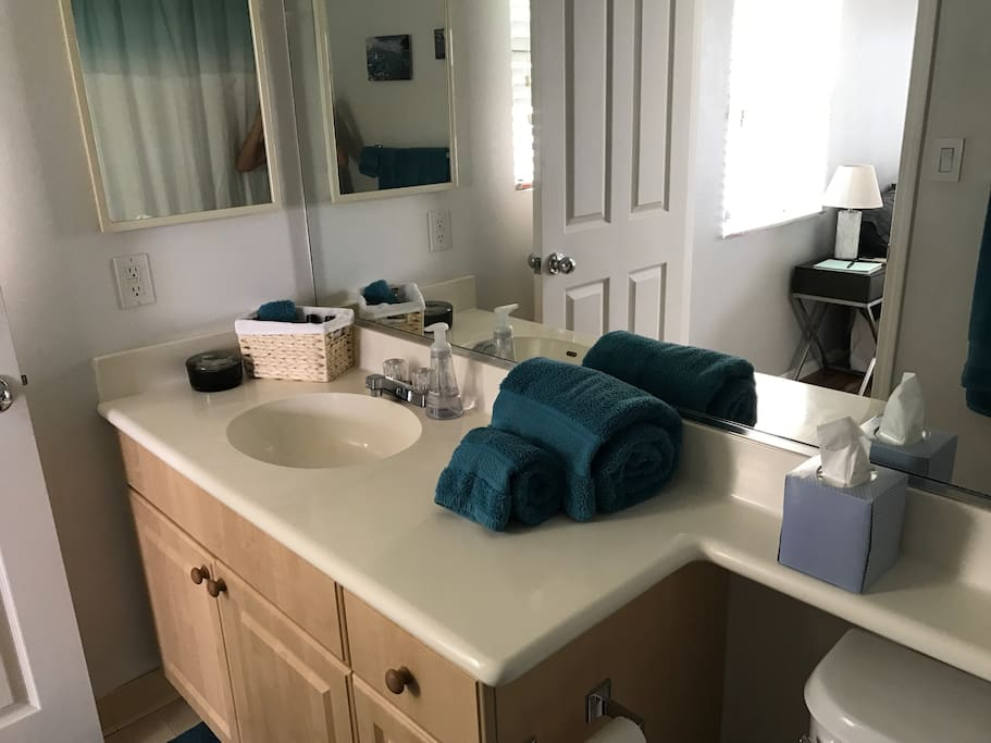 Full bathroom with tub. We provide bath towels, beach towels, bathroom tissue, facial tissue, shampoo, conditioner, lotion, hand and body soap, first aid kit, and sunscreen.