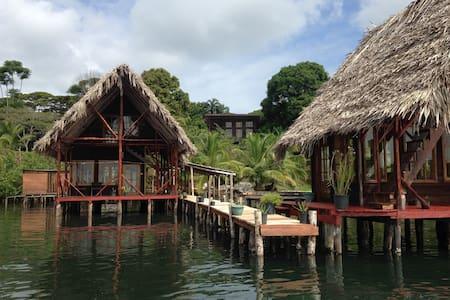 Gone CocoaNuts Waterfront Lodge - Starfish Room