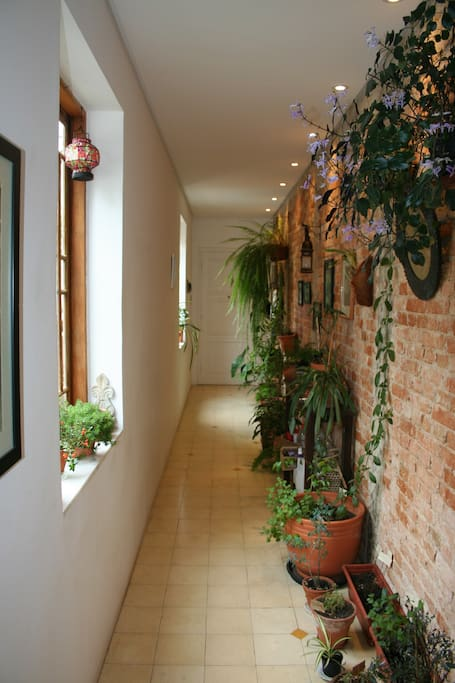 Entrada do apartamento com tijolo aparente e plantas.