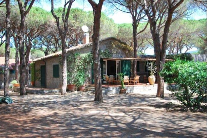 Villa  in front of the sea - Marina di Campo - Maison