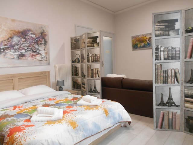 The unified bedroom with living room separated with a nice decoration