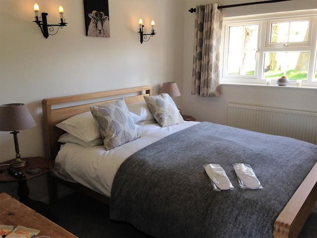 Double Room at Bowens Bed and Breakfast