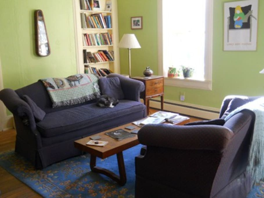 Good books, games and puzzles can be found in the living room.