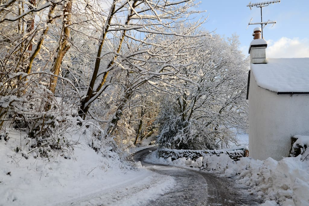 Looking down the lane in winter
