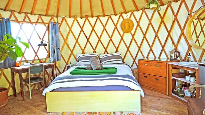 The Cazador Yurt - Mt. Washington