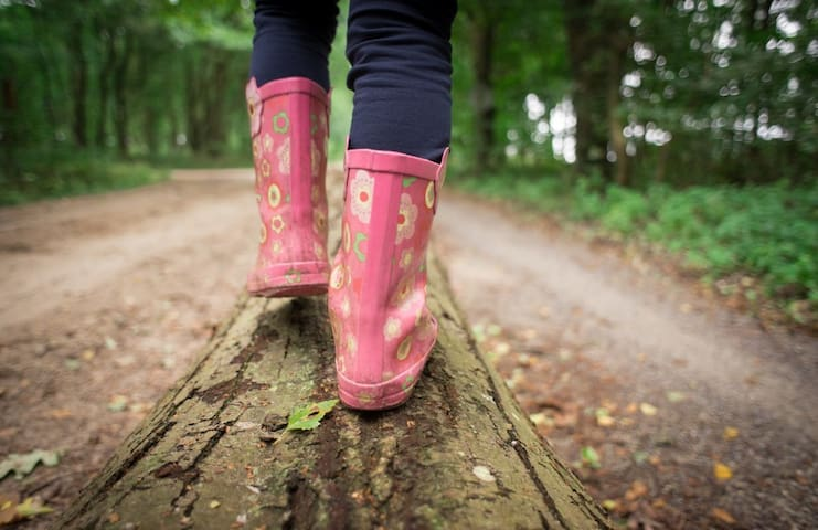 Our guide on local walks
