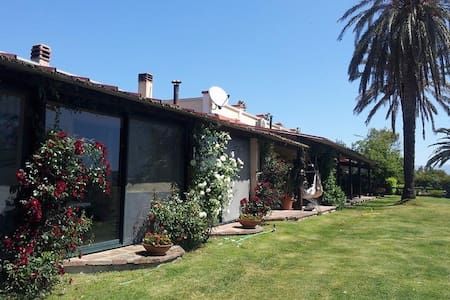 Country B&B  with stunning Cagliari views! :-) - Elmas - Bed & Breakfast