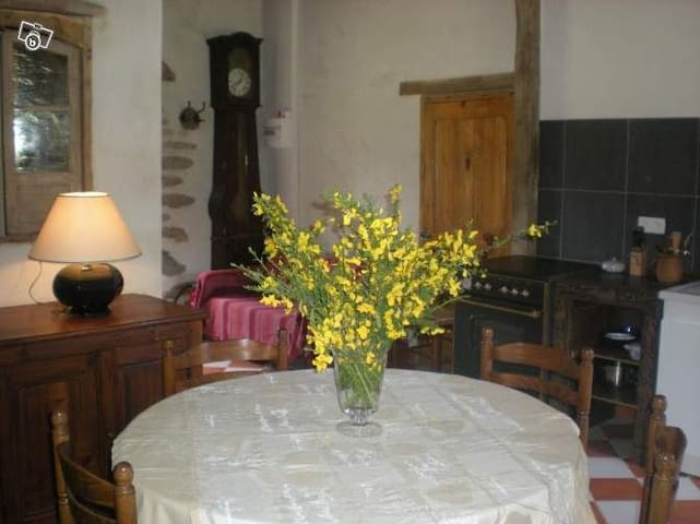 Apartment 40m2 quiet in countryside - Saint-Jean-Brévelay - Lägenhet