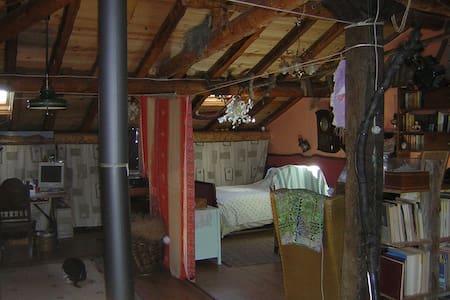 B&B en la Arquitectura Negra - Majaelrayo - House