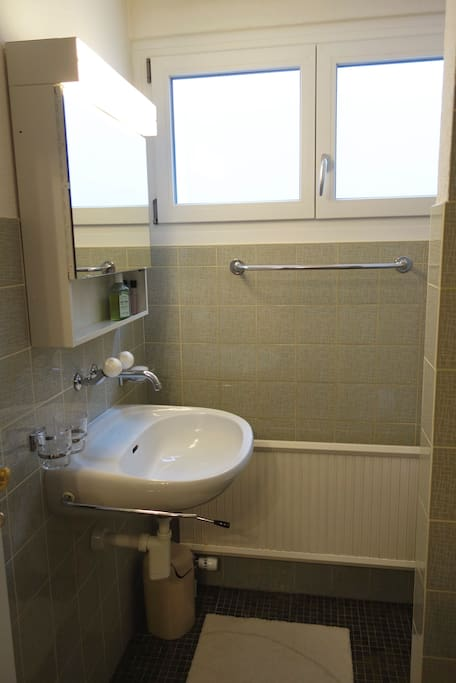 Bathroom with WC and Shower