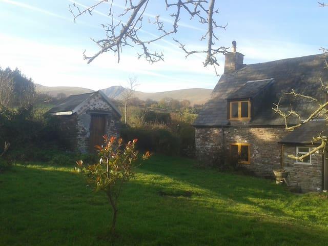 18th Century Hill Farm Cottage - Brecon - Dům