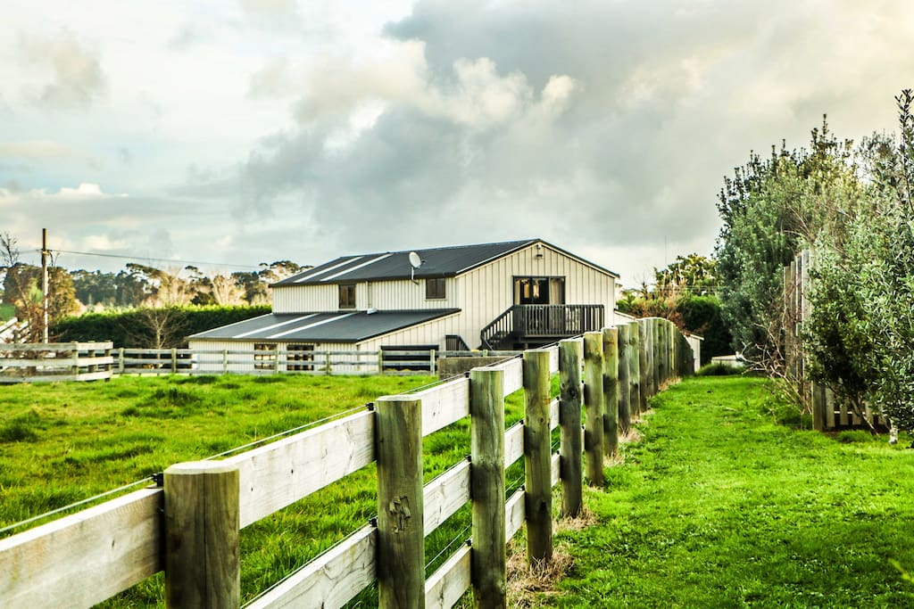 Home in the paddocks