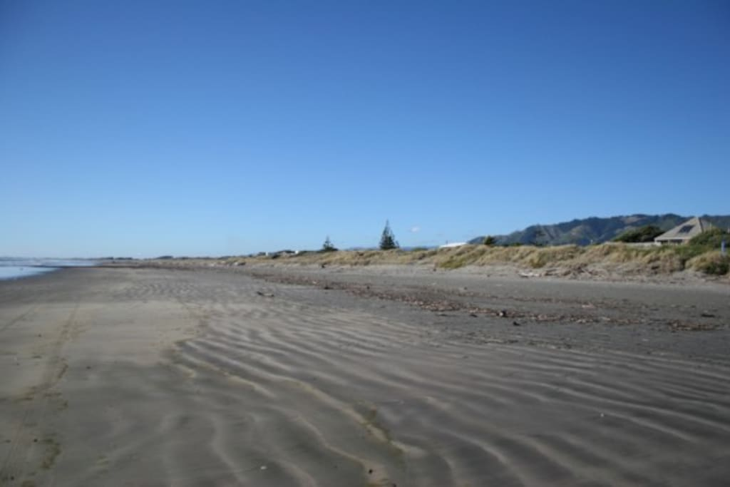 The beach is the star in Waikanae. Fishing, surfing, walking, biking, building sand castles or just relaxing in the sun.