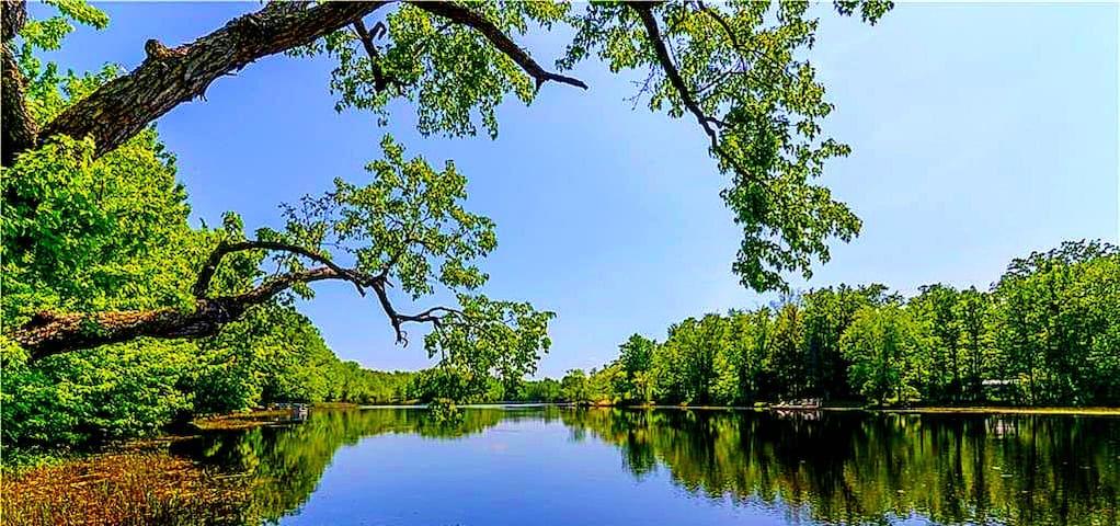 Your River Run Escape on the Moira