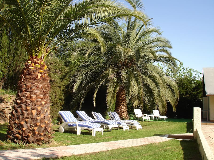 Relaxing in private sunny garden..!