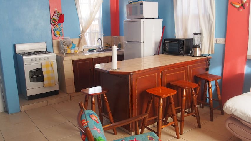 Kitchen and bar in downstairs