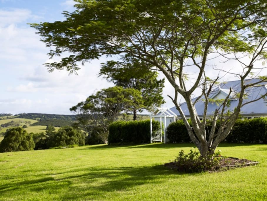 Rural setting close to Bangalow and Byron Bay