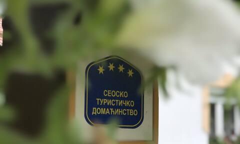 Seosko Domaćinstvo Bosa Damljanović