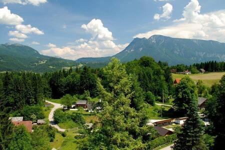 Апартаменты Хельга - незабываемый отдых в Австрии