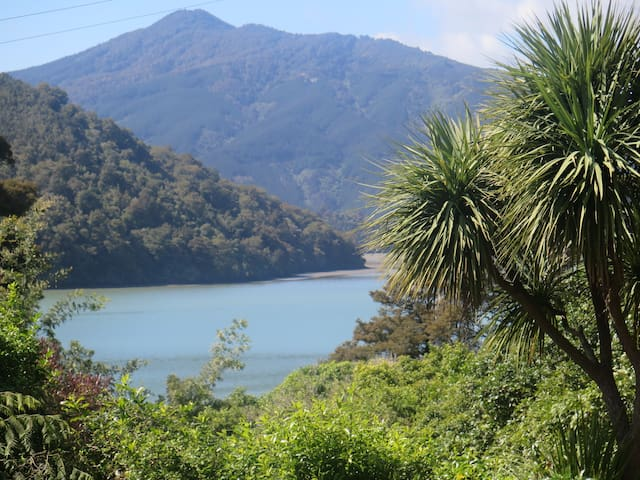 Beth Haven- In the Beautiful Marlborough Sounds