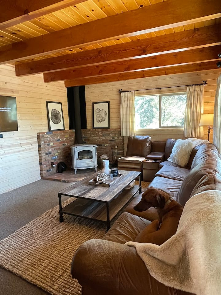 ✤15min→Big bear ✤Cozy secluded cabin→Nat'l Forest