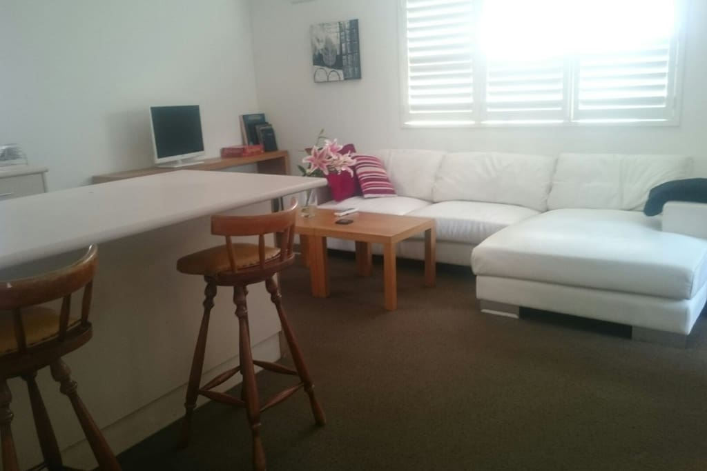 shared guest wing. comfortable lounge, TV, kitchen area. provided x box, board games and books only for guests