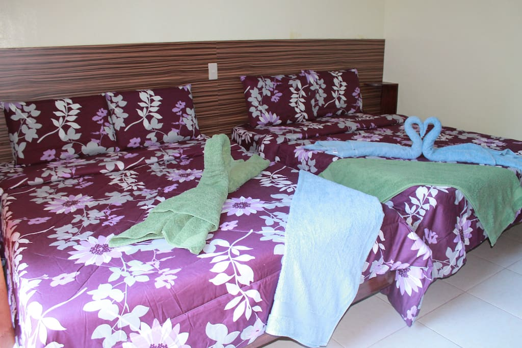 Two full-sized beds good for 2-4 persons