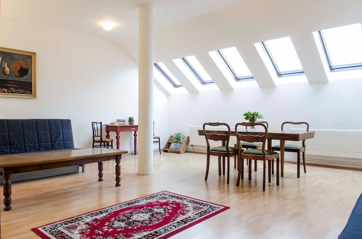 SPACIOUS APARTMENT IN CENTER - Prague - Apartment