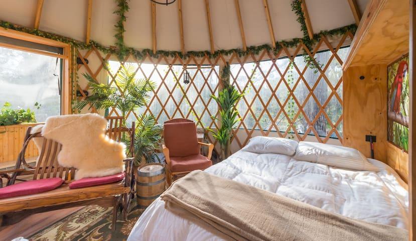Queen-size Murphy bed
