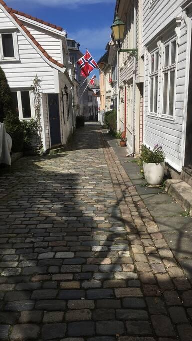 Our street, Skuteviksveien