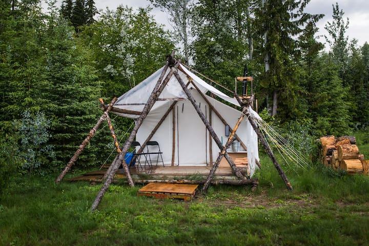Wilderness Wall Tent