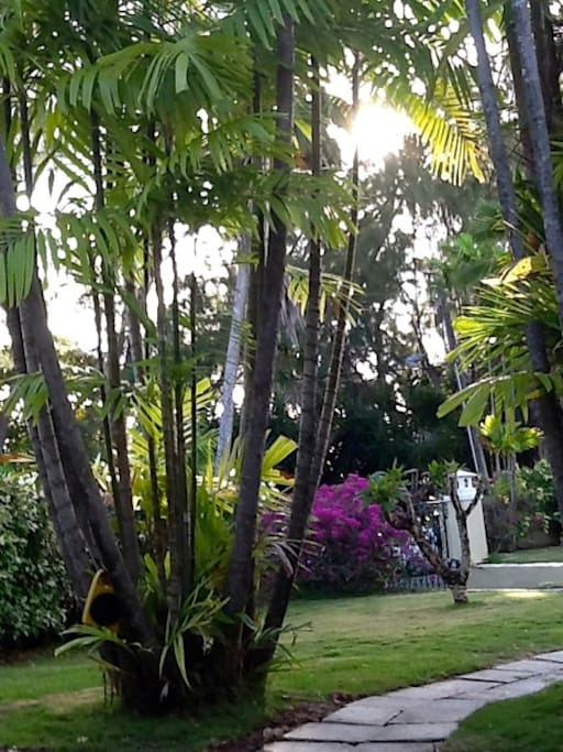Entrance to the Apartment facing the garden