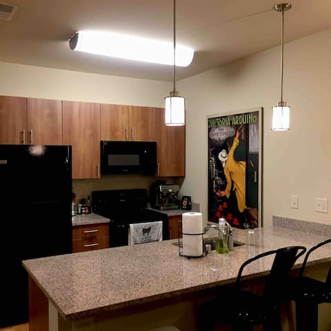 Luxurious 1 Bedroom Apartment with Capitol view