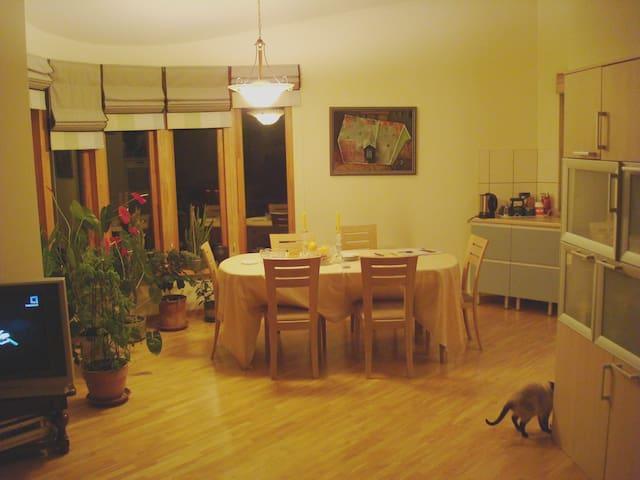 Best place in Vilnius - 2 dbl rooms - Vilnius - Casa