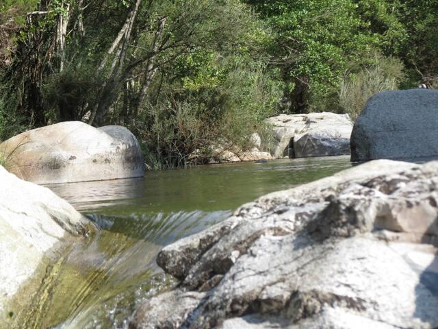 Rivière LE TARAVO, dans le Valinco. Corse du Sud.