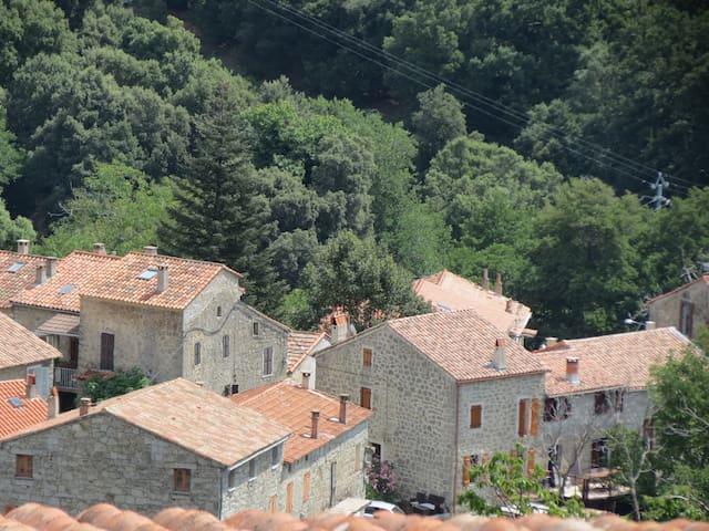 La maison est isolée du petit village de Campo, pour votre tranquillité !
