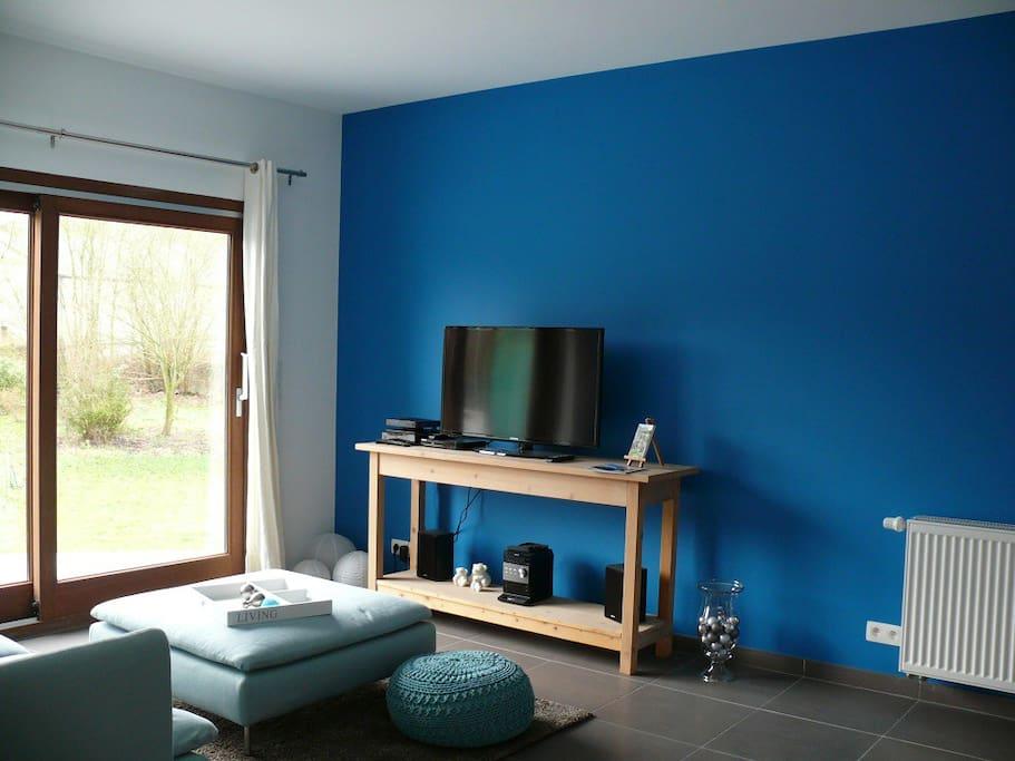 Salon avec TV, canapé-lit 1 pers. et baie vitrée.