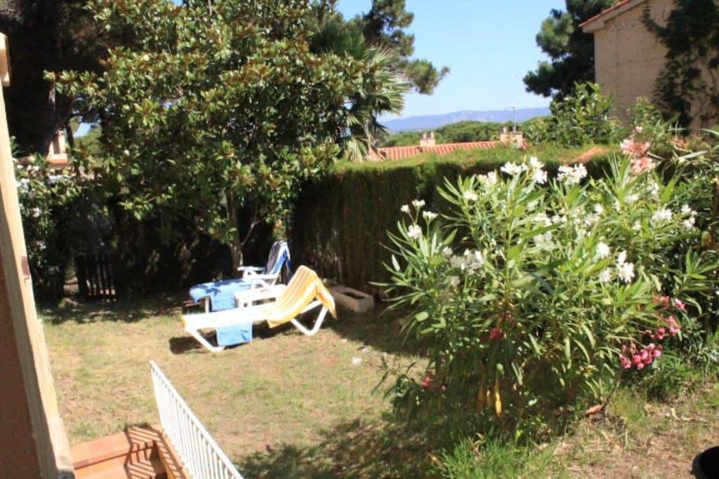 Petit jardin ensoleillé
