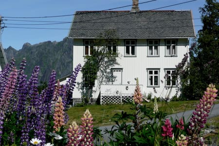 "Room in Reine ""Bunes"" - Reine - Bed & Breakfast"