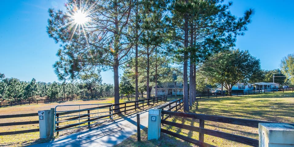 Quiet Country Living - Apopka - House