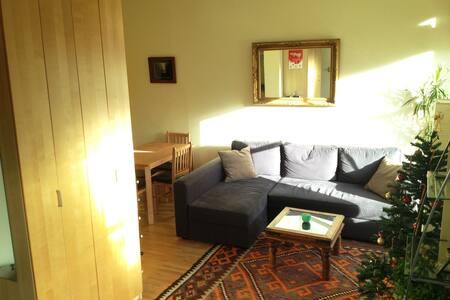 Studio Apartment (Holland Park)