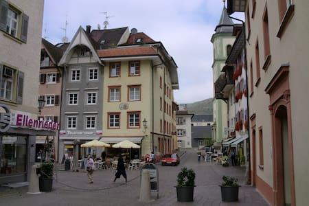 Waldshut Altstadt 1 Zi. Whg. 3.OG - Waldshut-Tiengen - House
