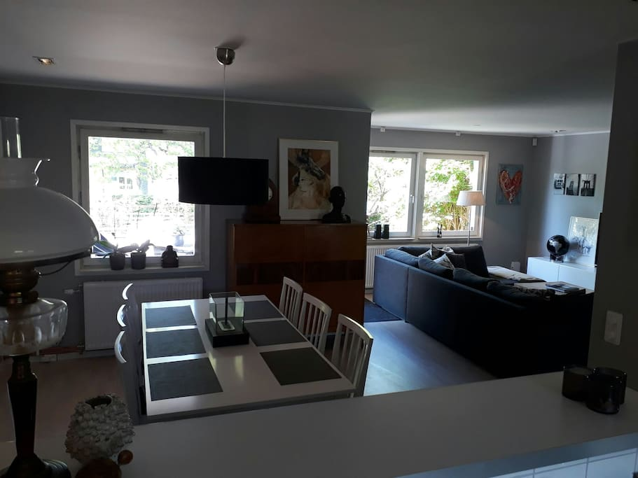 Dining table and living area