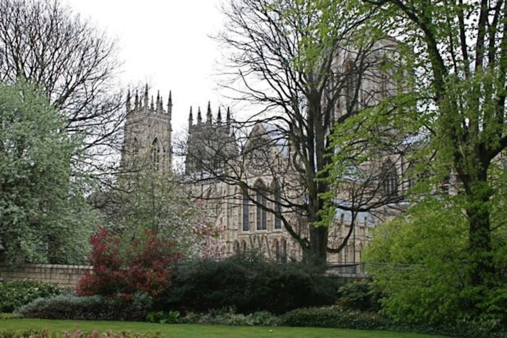 The Minster view from the gardens.