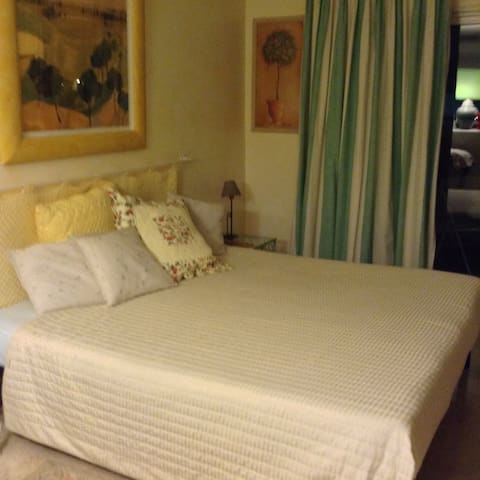 Cannes : my beautiful One bedroom - Cannes - Apartment